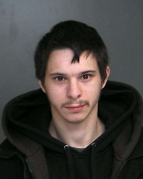 Sex offender level 2 iovino