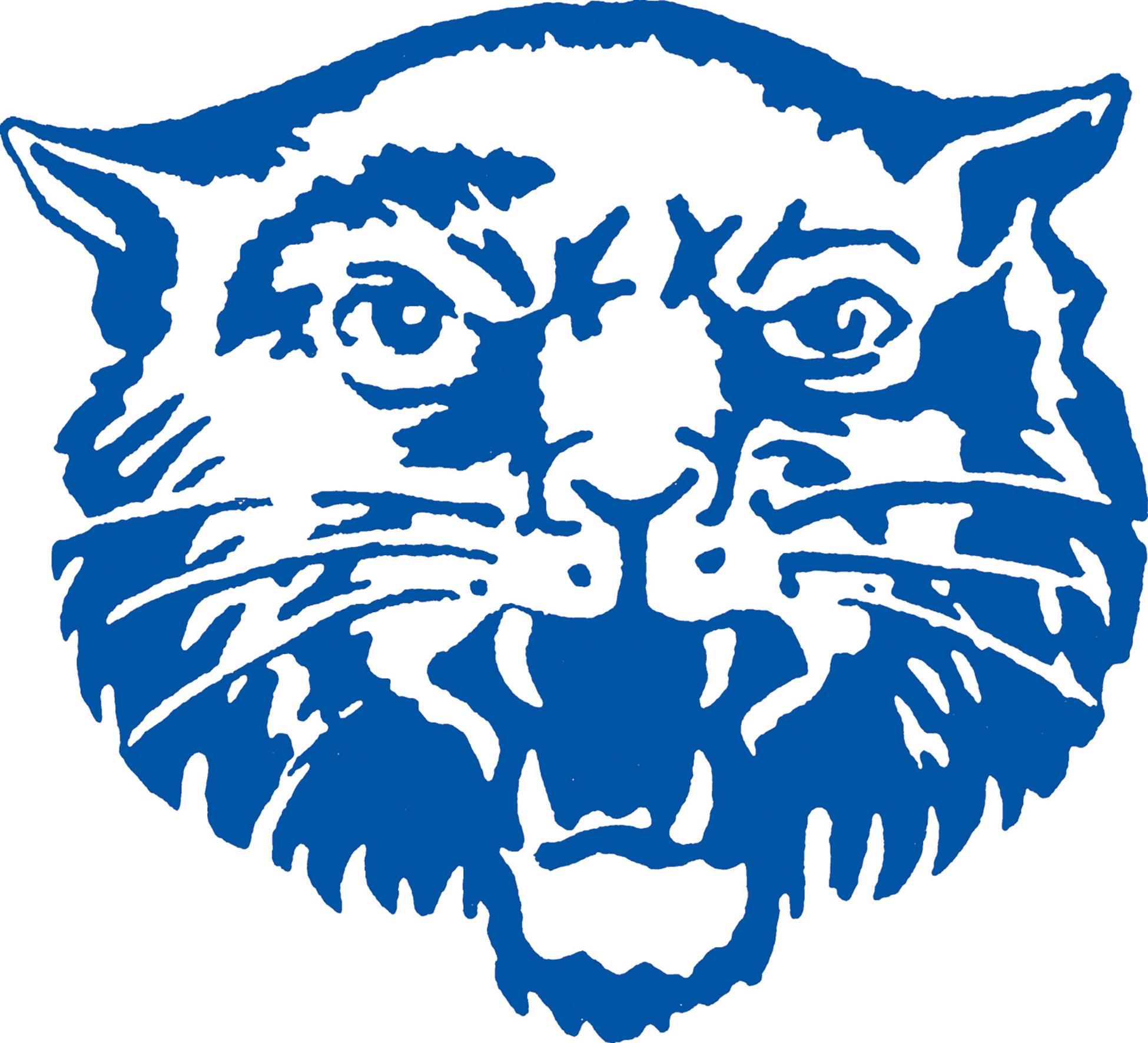 Hancock Wildcat logo (5/2021)
