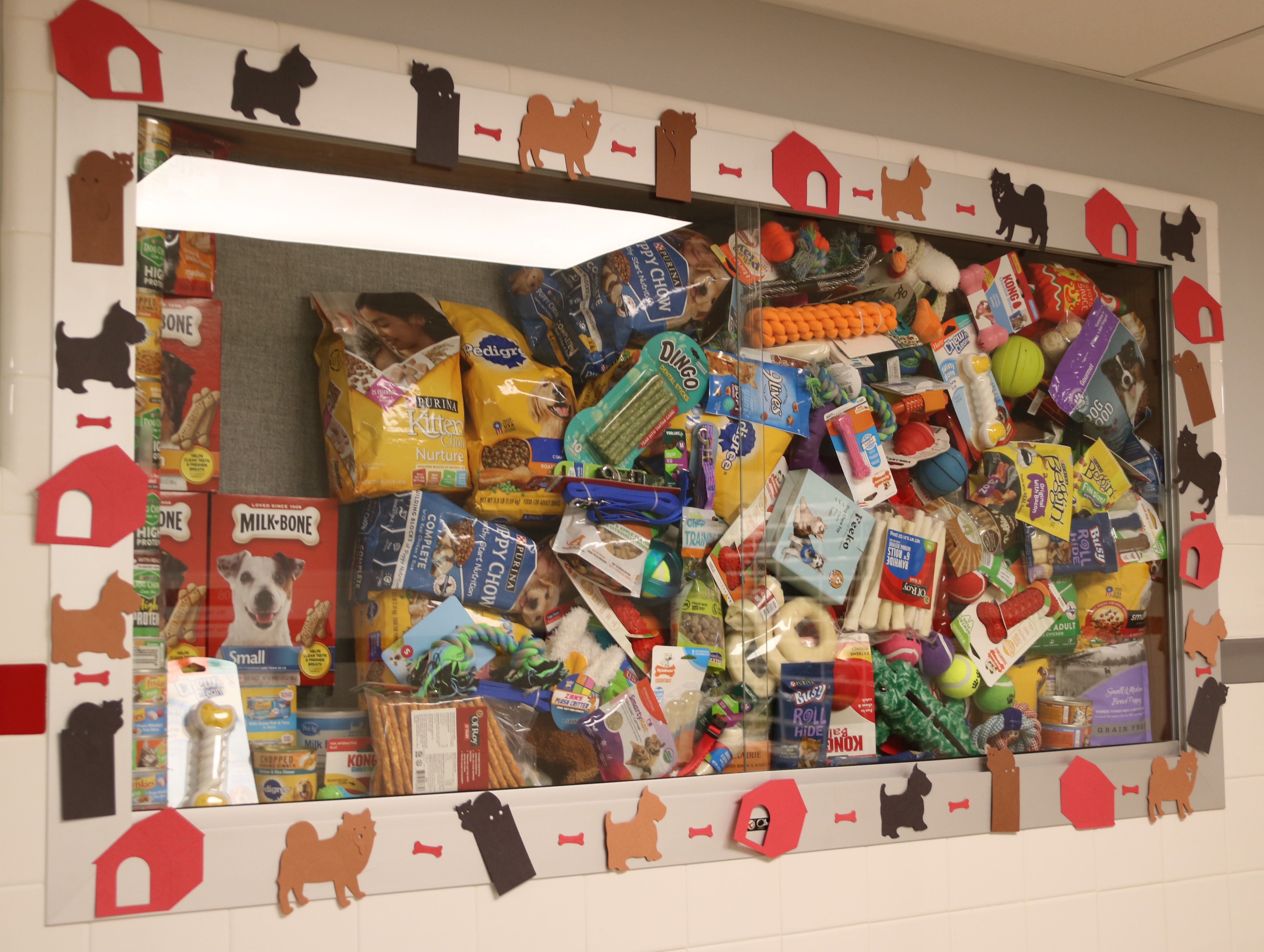 donations collected on display