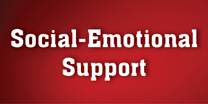 Social-Emotional Support