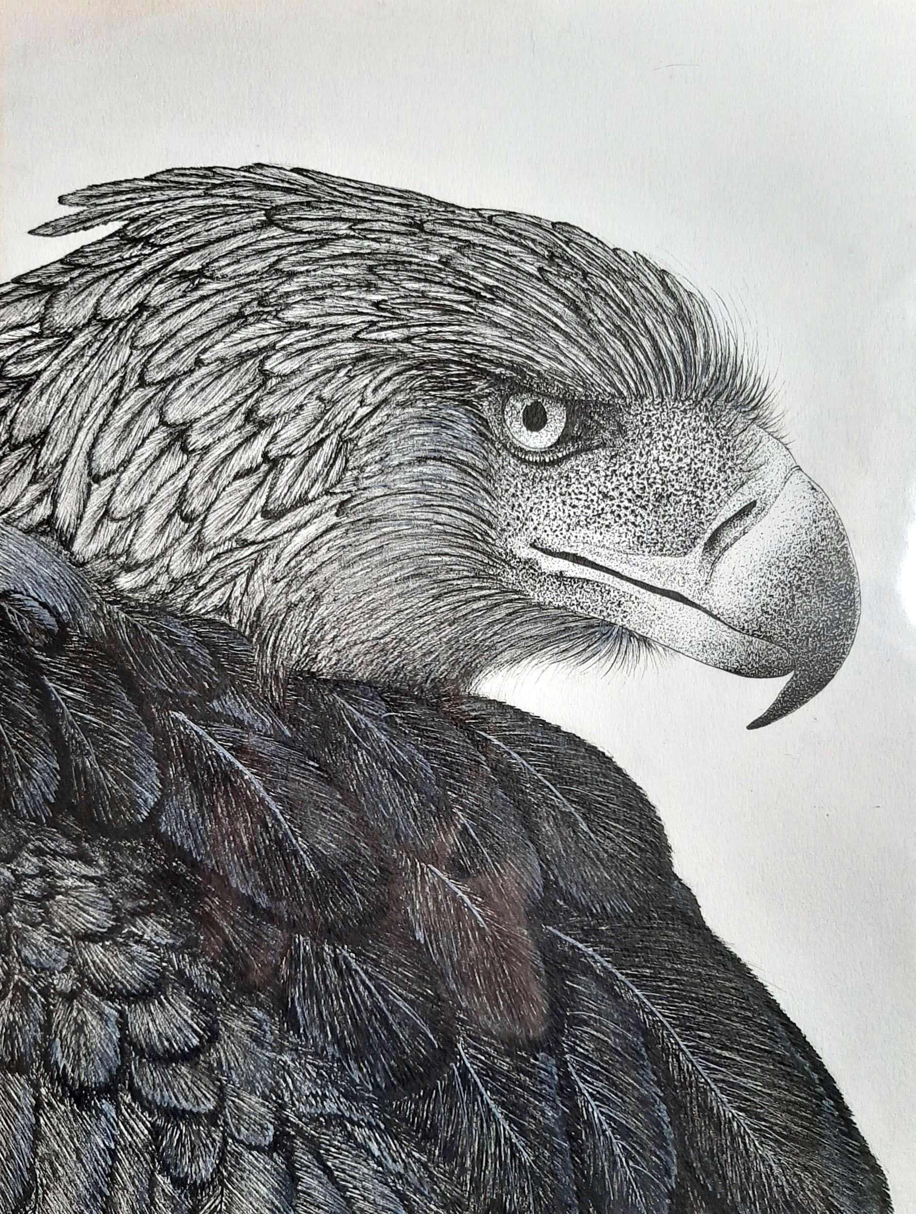 "Drawing titled ""Endangered"""