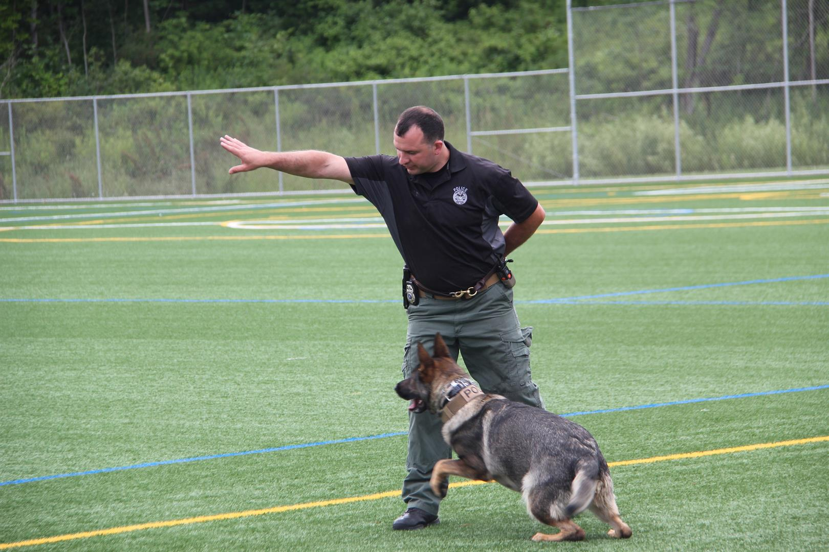 trainer works with anouk the police k 9