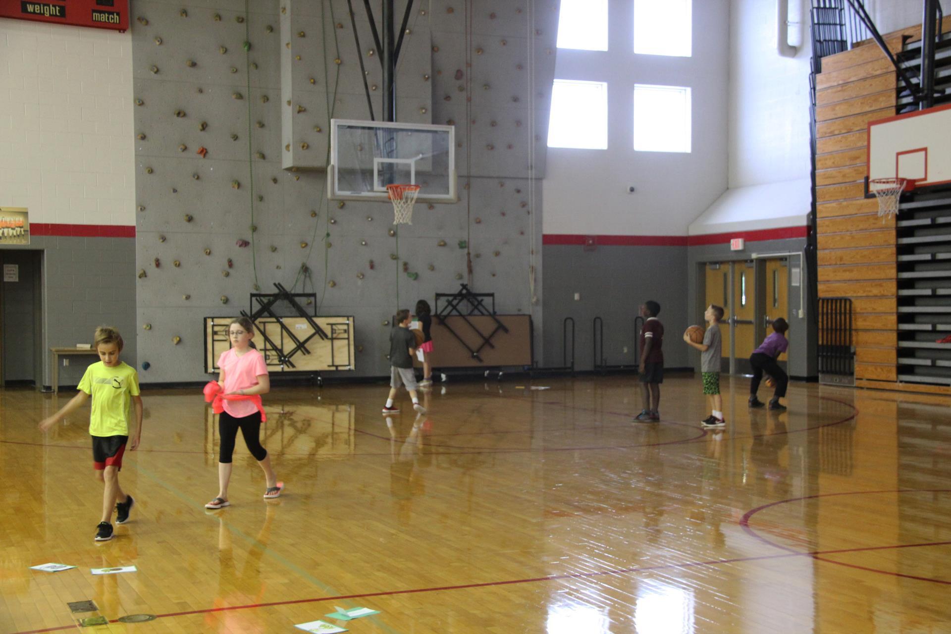 wide shot of gymnasium